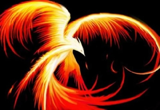 phoenix-bird-wallpapers